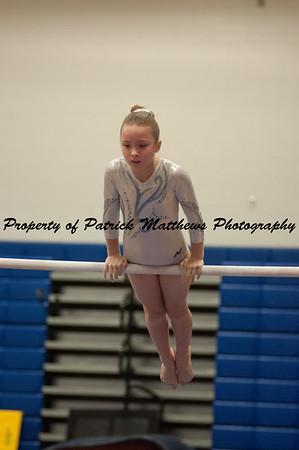 2014-04-05 YMCA Gymnastics States session 1 (126 of 775)