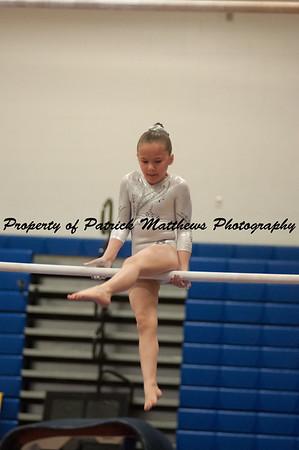 2014-04-05 YMCA Gymnastics States session 1 (144 of 775)