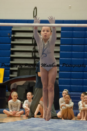 2014-04-05 YMCA Gymnastics States session 1 (124 of 775)