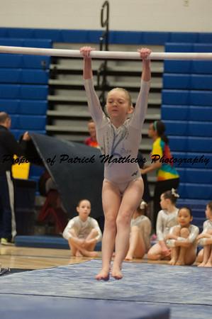 2014-04-05 YMCA Gymnastics States session 1 (111 of 775)
