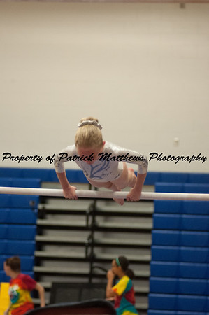 2014-04-05 YMCA Gymnastics States session 1 (112 of 775)