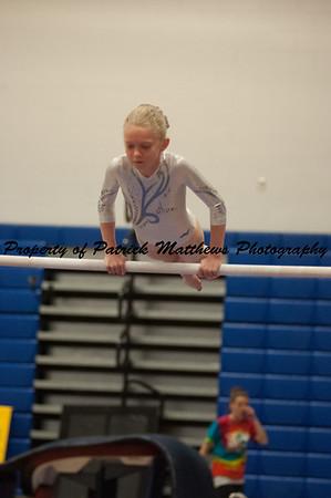 2014-04-05 YMCA Gymnastics States session 1 (118 of 775)