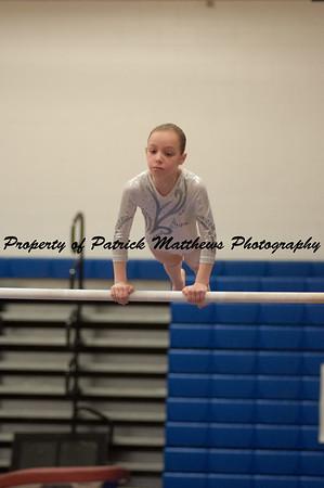 2014-04-05 YMCA Gymnastics States session 1 (106 of 775)