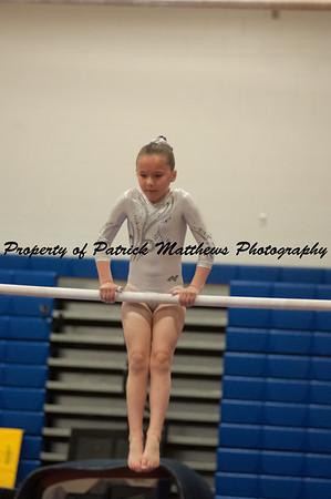 2014-04-05 YMCA Gymnastics States session 1 (149 of 775)