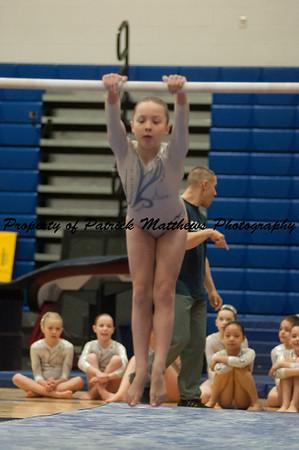 2014-04-05 YMCA Gymnastics States session 1 (125 of 775)
