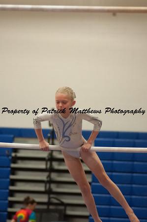 2014-04-05 YMCA Gymnastics States session 1 (117 of 775)