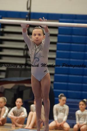 2014-04-05 YMCA Gymnastics States session 1 (154 of 775)
