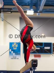 Gymnastics @ Yorktown (08 Jan 2014)