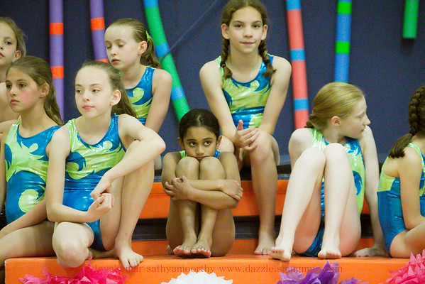 Gymshow2015