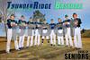 2017 Baseball Poster 12in x 18in