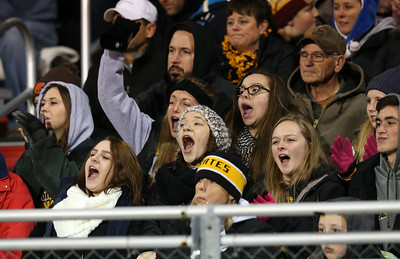 Black River fans cheer during the Pirates' Regional Final playoff game against South Range. Aaron Josefczyk / Gazette