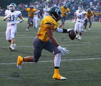 Medina's Jordan Fultz scores a touchdown against Strongsville during the first quarter. (RON SCHWANE / GAZETTE)
