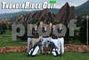 2014 Golf Boys TRHS POSTER FINAL