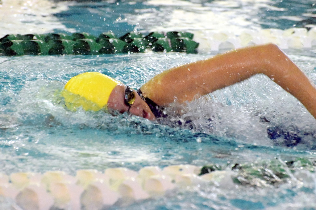 . The 2018 Downriver Classic was held on Saturday at Allen Park. This year\'s champion was Trenton, followed by Wyandotte Roosevelt in second and Grosse Ile in third.  Frank Wladyslawski - Digital First Media