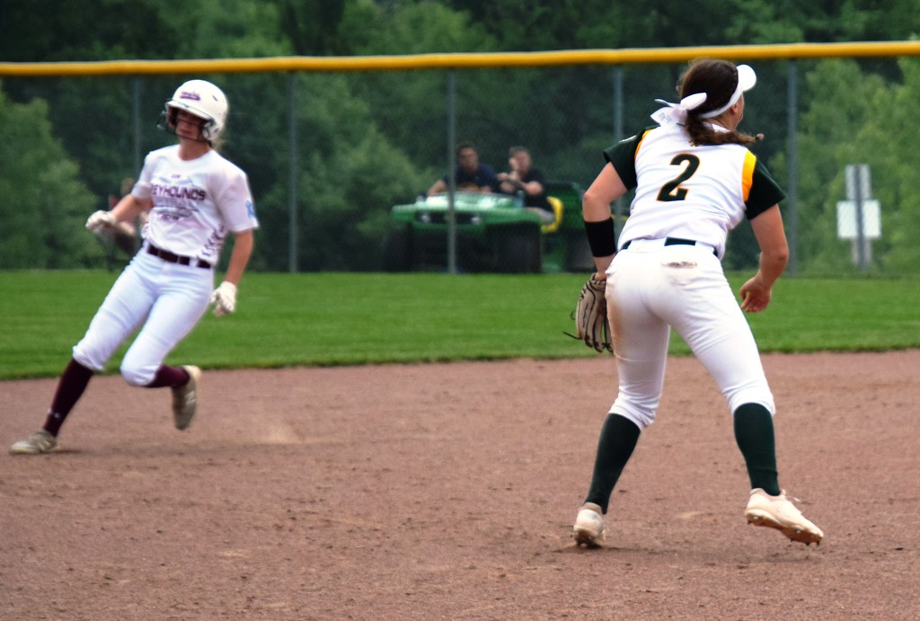 . Flat Rock fell by a score of 12-4 on Tuesday against Eaton Rapids in a Division 2 state quarterfinal at Saline.  Photo by Alex Muller - For The News-Herald