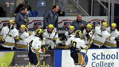 Trenton took on Hartland in the Division 2 state championship game on Saturday morning at USA Hockey Arena in Plymouth. The Trojans ultimately suffered a 4-2 defeat in what was the program's 21st appearance in the state finals. Photo by Frank Wladyslawski - The News-Herald