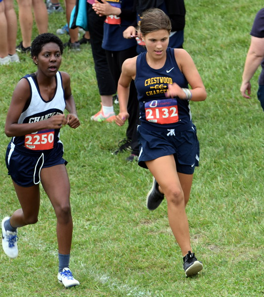 The 2018 Warrior Invitational was held on Friday at Lake Erie Metropark. Woodhaven won the boys' championship and the Allen Park girls finished third. Frank Wladyslawski - Digital First Media