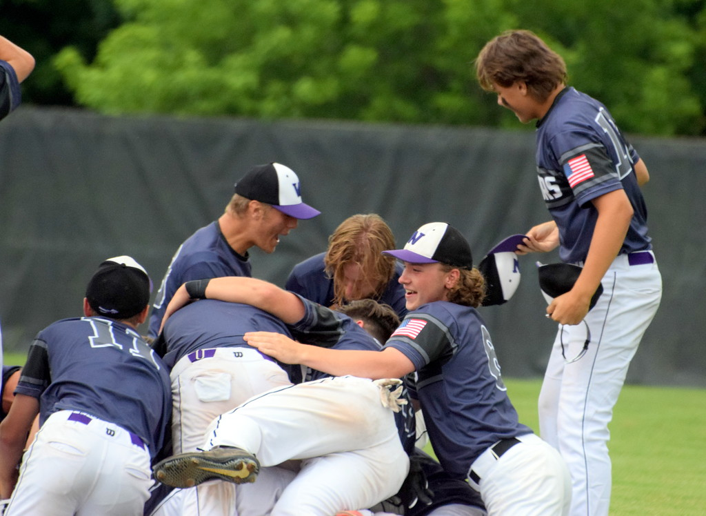 . Woodhaven defeated Grand Ledge by a score of 1-0 on Tuesday in a Division 1 state quarterfinal at Chelsea. With the win, the Warriors advanced to the state semifinals. Photo by Frank Wladyslawski - The News-Herald