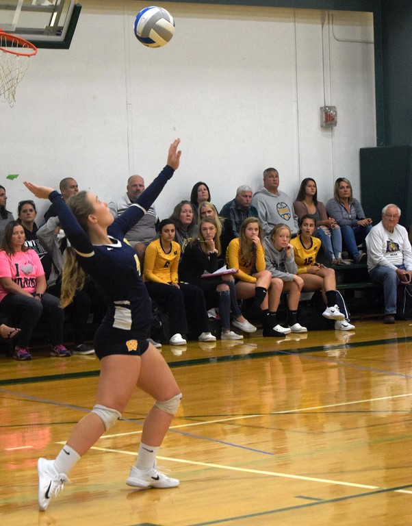. Allen Park welcomed in Wyandotte Roosevelt on Thursday night and swept the Bears 3-0. Photo by Frank Wladyslawski - The News-Herald