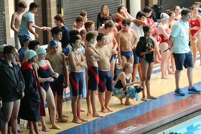 HS Swim & Dive 2017