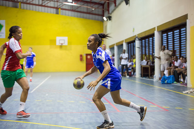 Finale Playoffs Handball 2015 game2