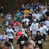 Hashathon Start and Woods 2011 035