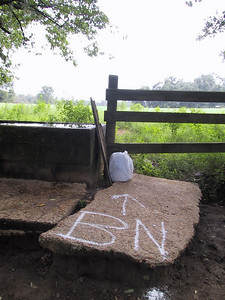 """Beer Near #2"" Well, I couldn't stand it - this First Cow Trough is only a few yards from the true trail mark, is a centrally located 'item,' and true trail points down a trail that loops back anyway - so I had to at least check the trough before venturing downhill - voila!"
