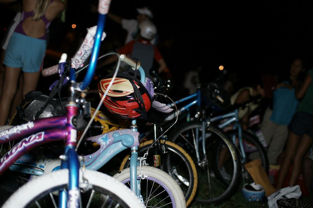 Hatchling Triathlon Race 2 - Image 005