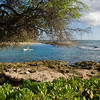 Paradise Cove Outrigger-2