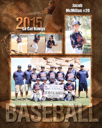 Hawgs Baseball