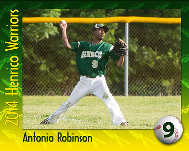 2014_Senior_Poster-Robinson