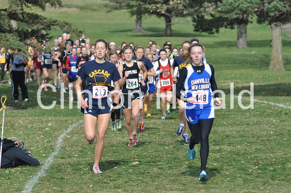 There were no area teams or runners in the Class 3A races. Anna Holdiman (bib No. 444) won her second state title in the girls race (13:51), while Chandler Austin (bib No. 611) of Boone won the boys race in 15:25. Decorah won both the boys and girls team titles.