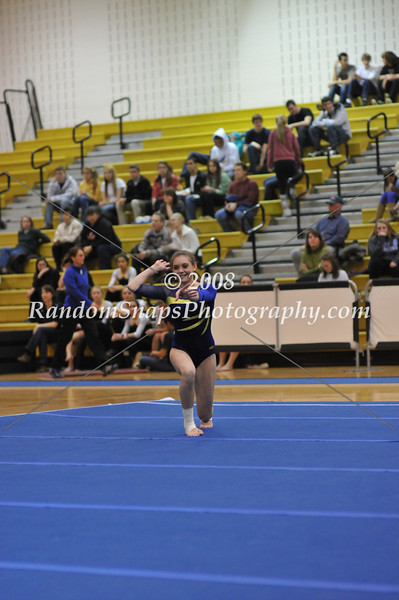 High School Gymnastics - 2011