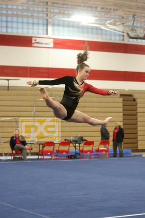 High School Gymnastics 2015-16