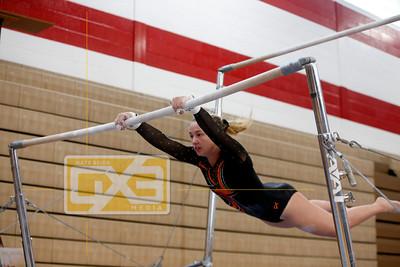 High School Gymnastics GYM1617