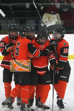 High School Hockey 2015-16