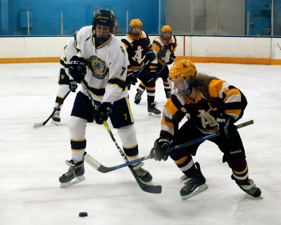 . Jen Forbus - The Morning Journal<br> Avon Lake\'s Jared Aslaksen and Olmsted Falls\' Zach Henley cross sticks in an effort to gain control of the puck on Jan. 14.
