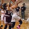 Paul DiCicco - The News-Herald<br />  North's Ally Lako underneath the hoop, going for two.