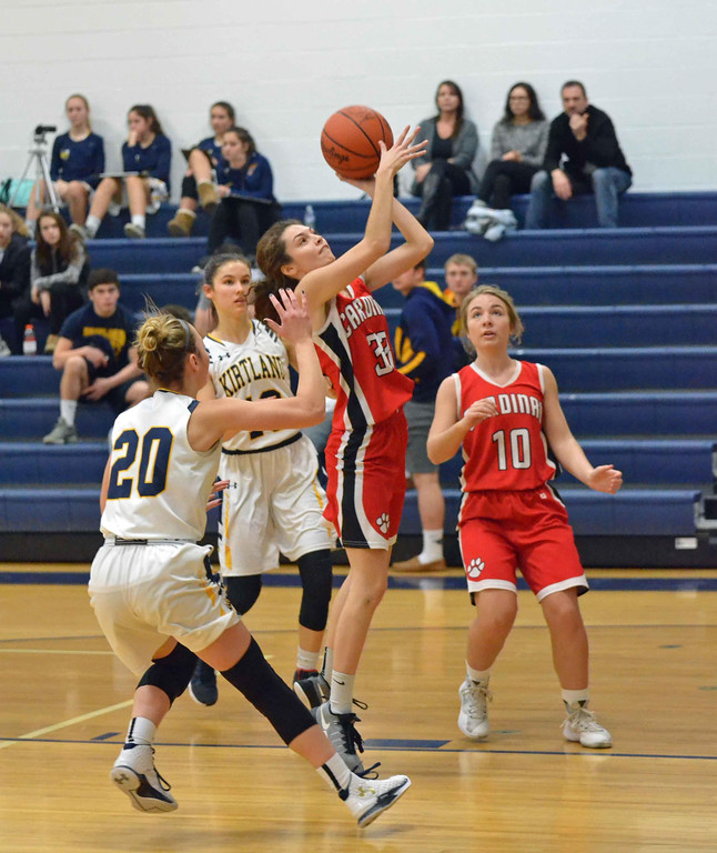 . Paul DiCicco - The News-Herald Cardinal\'s Adrana Naples (33) drives the lane against Kirtland\'s Sydney Snyder (20) in the first quarter on Jan 27.