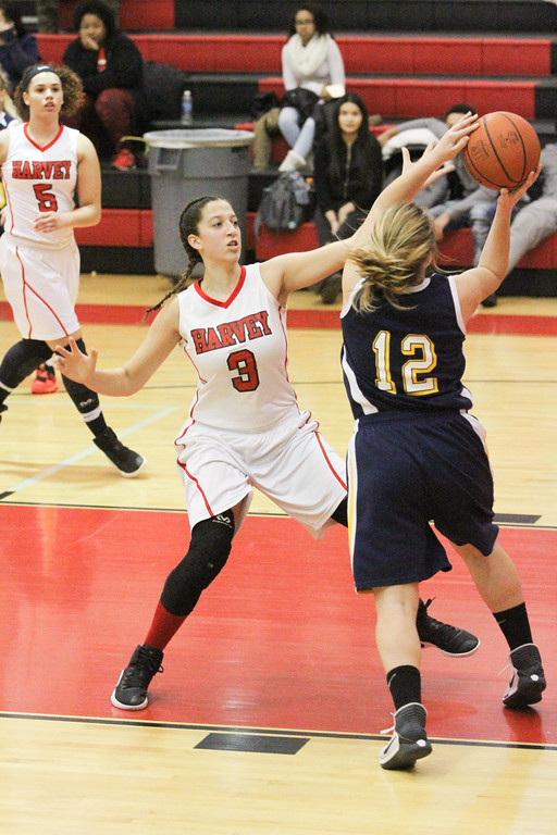 . Barry Booher - The News-Herald Harvey\'s Nakayla Cruz knocks the ball away from Nicole Carroscia.