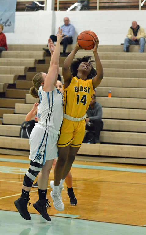 . Paul DiCicco - The News-Herald Photos from the Brush at South girls basketball game on Feb. 10, 2018