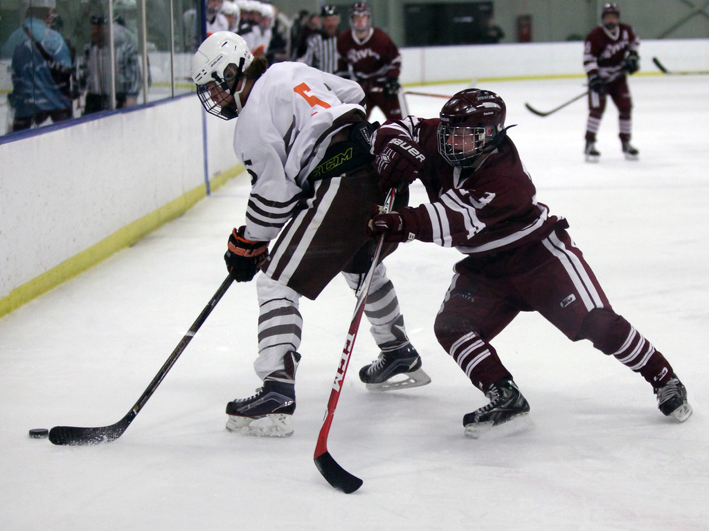 . Randy Meyers - The Morning Journal Ian Herrman of Rocky River pushes Trenton Cramer of Padua from behind as he tries to control the puck during the first period of the OHSAA sectional semifinals on Sunday