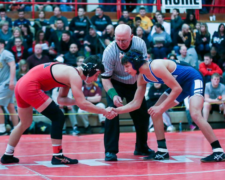 Coleen Moskowitz - The News-Herald<br /> Brichford, Madison vs. Fenton, Elyria.