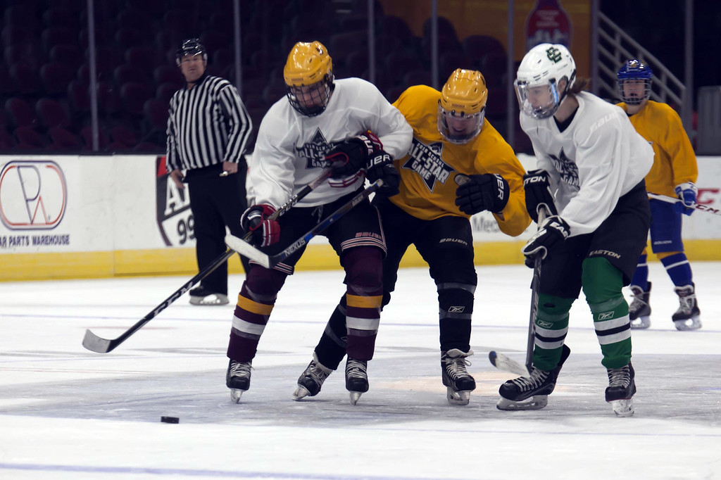 . Jen Forbus - The Morning Journal  Avon Lake\'s Connor Koncelik (left) and Elyria Catholic\'s Drew Beck work to maintain control of the puck for the White Team in the championship round of the GCHSHL All-Star hockey game on March 4 at the Quicken Loans Area.