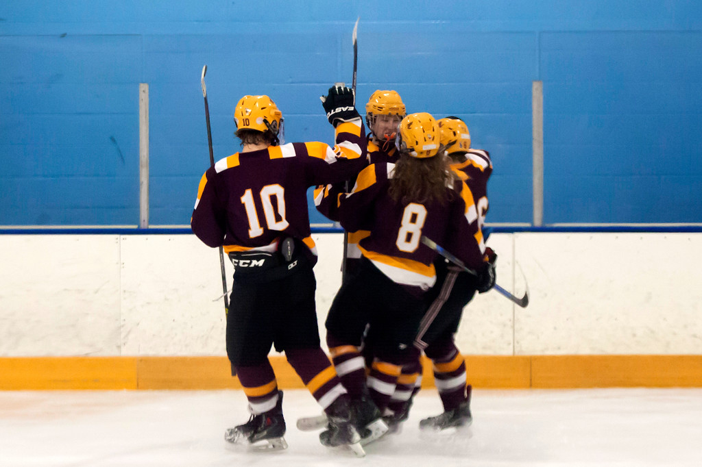 . Jen Forbus - The Morning Journal<br> Avon Lake celebrates a goal against Olmsted Falls during a Southwestern Conference quarterfinal game on Jan. 14.