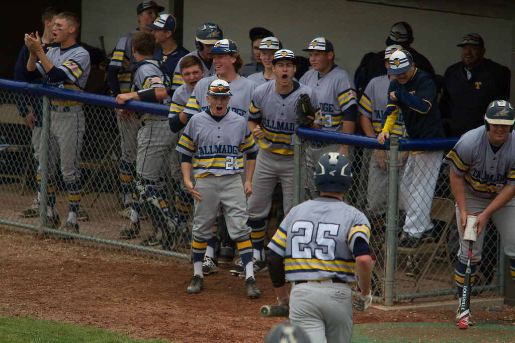 . Michael Johnson - The News-Herald The Tallmadge bench celebrates after a run is scored during the Division 2 Regional Tournament in Hudson on May 26.  Tallmadge defeated NDCL 3-1.