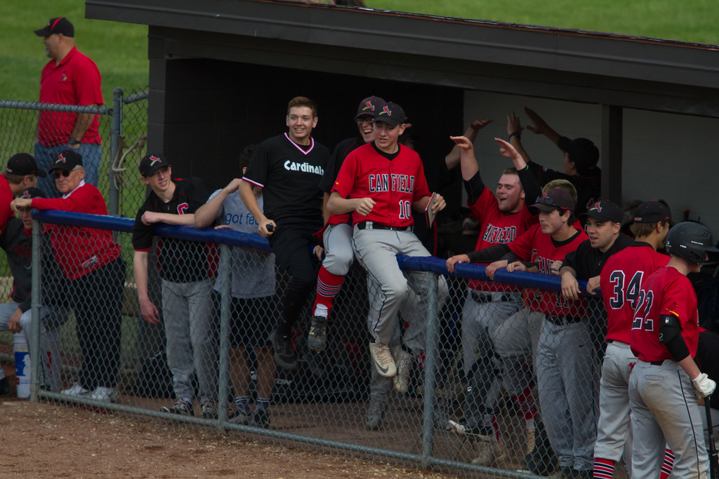 . Michael Johnson - The News-Herald Canfield celebrates after taking the lead over Chagrin Falls during the Hudson Regional Semifinal on May 26.  Canfield defeated Chagrin Falls 2-0.
