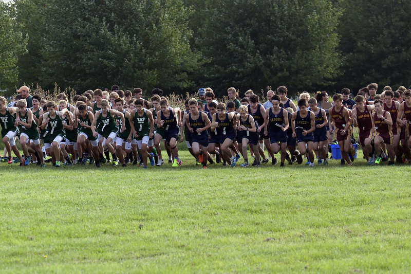 Jen Forbus - The Morning Journal<br /> The Westlake, North Ridgeville and Avon Lake boys cross country runners take off at the sound of the starter's pistol.