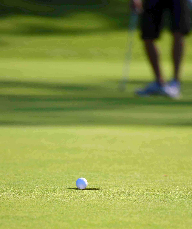 . Paul DiCicco - The News-Herald South Junior, Adam Paris\'s putt going in the hole from 30 feet for a birdie on hole 2 at Manikiki Golf Course on Sept 21.