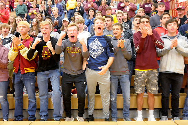 Don Knight | The Herald Bulletin<br /> Alexandria's student section cheers as the Tigers are introduced before the Volleyball semistate at Plymouth High School on Saturday.